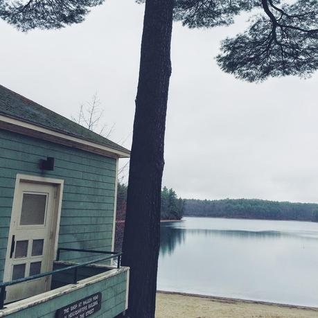 Wilder Pictures: Early Spring at Walden Pond on a Rainy Day