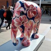 The Elephant Parade
