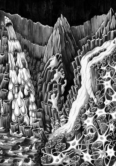 Kahn Depths Of A Wound Farinella Copy