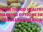 Healthy Snacking Options Toddlers Kids