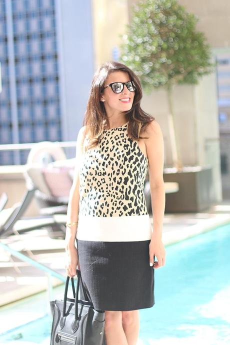 4.collective leopard