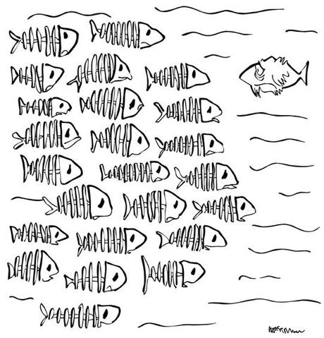 line drawing of fish, one lone fish looking with dismay at whole school comprised of fish skeletons
