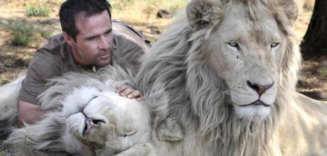 The Man Who Hugs Wild Lions