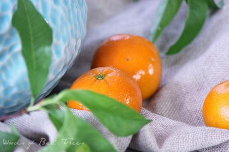 mandarin oranges peach leaves