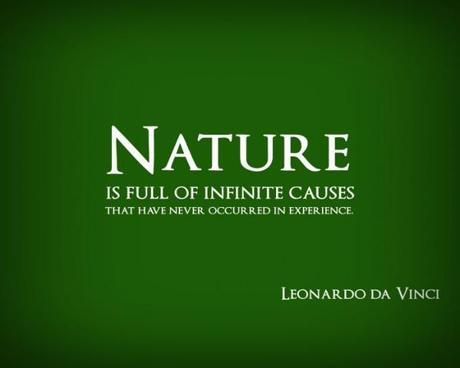 Leonardo Da Vinci Quotes Paperblog Simple Da Vinci Quotes