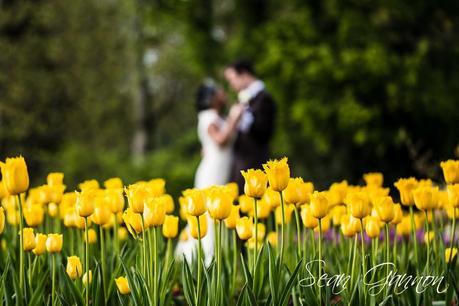 Pembroke Lodge Wedding Photographer 021