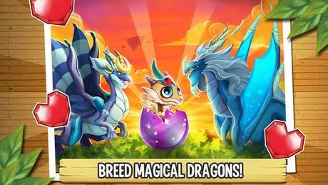 Dragon Ciii