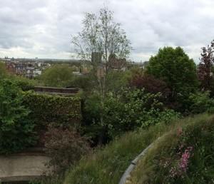 Babylon_Roof_Garden_Restaurant_London15