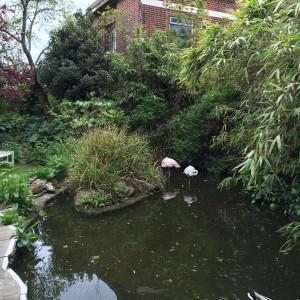 Babylon_Roof_Garden_Restaurant_London24