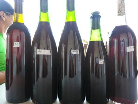 Blending Whitecliff Vineyard & Winery's 2013 Sky Island