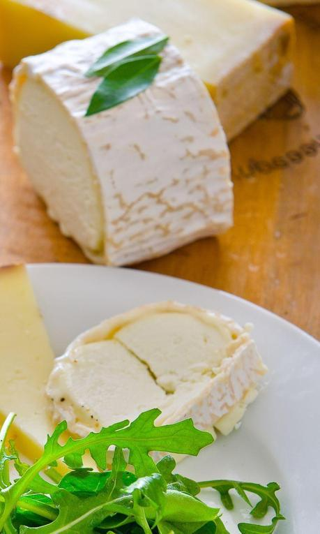 Goat Cheese Cropped copy