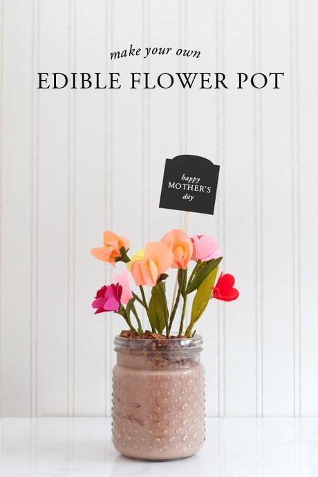 No sugar edible flower pot gift idea