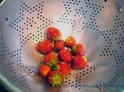 Surprise Strawberry Harvest