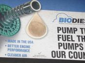 Nanoparticles Make Biofuel Refining Faster Cleaner