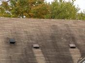 Preventing Moss Growth Roofs