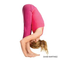 Yoga Teacher Training Weekend #3