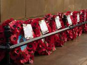 Remembrance Day: What Poppy Really Means