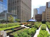 Riverpark Farm Urban Farming