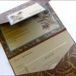 wedding invitation showcase Wedding Paraphernalia