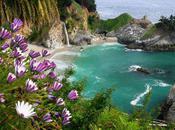 Best. Beach. Ever. Julia Pfeiffer Burns State Park, Near Sur,