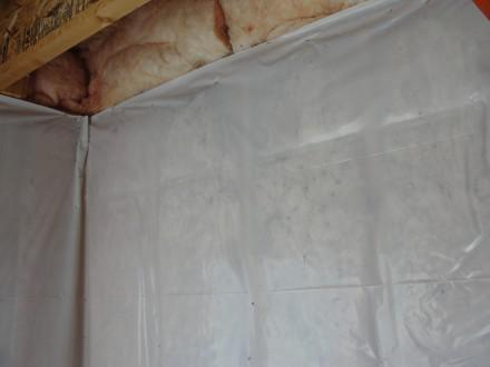 Mold in fiberglass batts