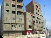 Egypt's Economic Procrastination