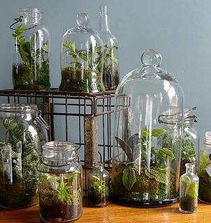 Terrarium construction