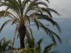 Turkey Turkey: American Holidays Antalya