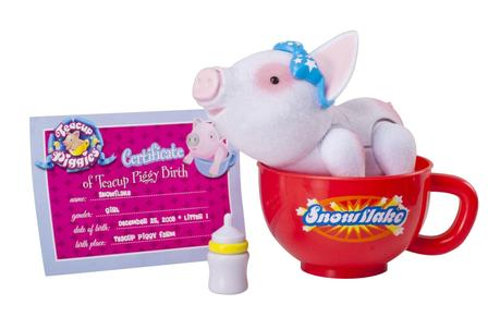 Hot New Gift Idea: Teacup Piggies and Piglets