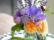 Vase Monday Roses Clematis with Garden Treats