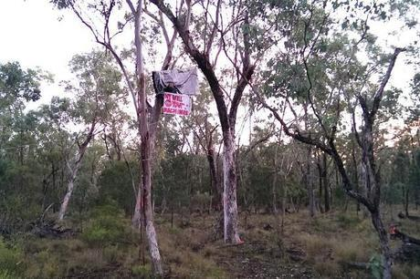 leard-forest-protest-1200-640x426