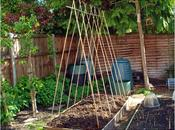 Garden Share Collective June 2014