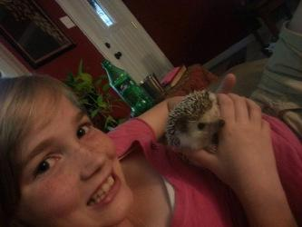 On Hedgehogs and Happiness