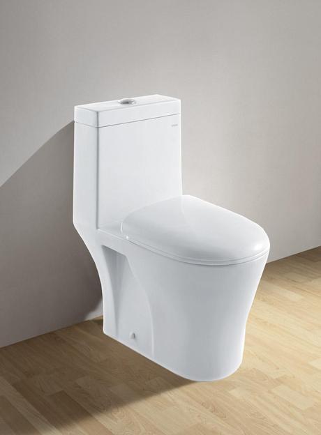 Diana White Dual Flush Toilet