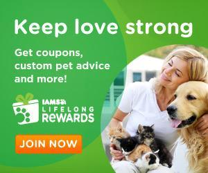 Image: Join Iams Lifelong Rewards for coupons and expert advice