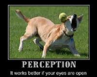 Reality and Perception