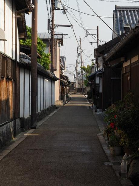 P5310295 豪商屋敷居並ぶ今井町,再訪 / Imai, Residences of wealthy merchants stand in rows