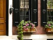 Outdoor Window Treatment Inspiration
