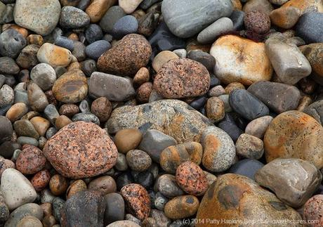 Rocks on the Shore © 2014 Patty Hankins