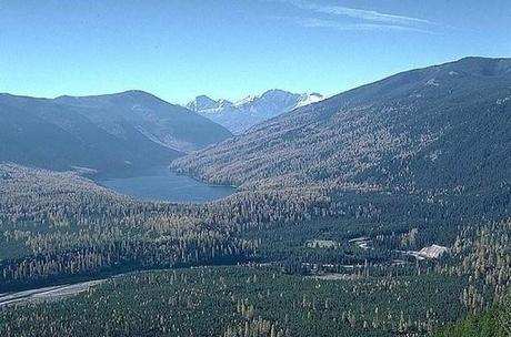 """How should """"Flathead National Forest 2.0″ look? 