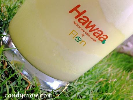 Hawaa  Soy Lotion Candles Review