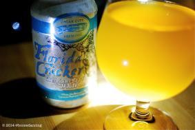 4th of July Beertography!