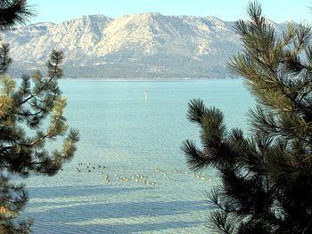 Fall 2007 view of south Lake Tahoe taken from ...