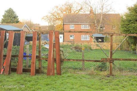 Garden makeover - new fence -3