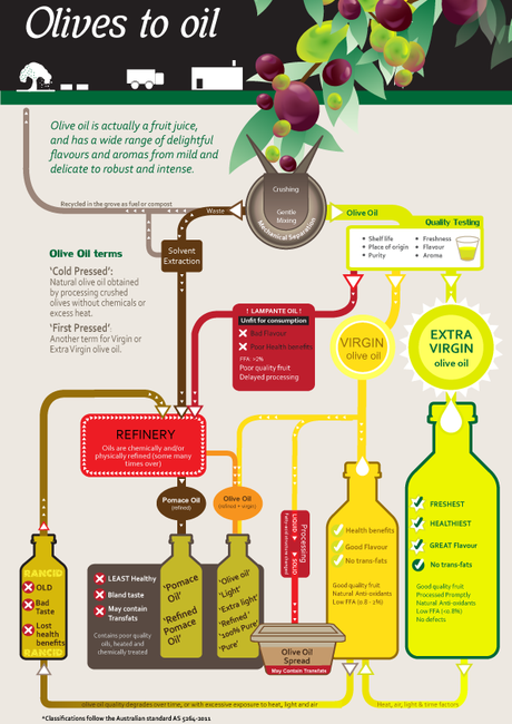 Interview with an Olive Oil Expert - Paperblog