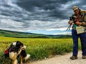 Camino Portraits: Pilgrim