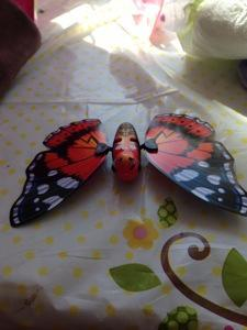 little live pets butterfly instructions