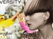 Intercoiffure Mondial: Diversity Inspired Hair Fashion 2014