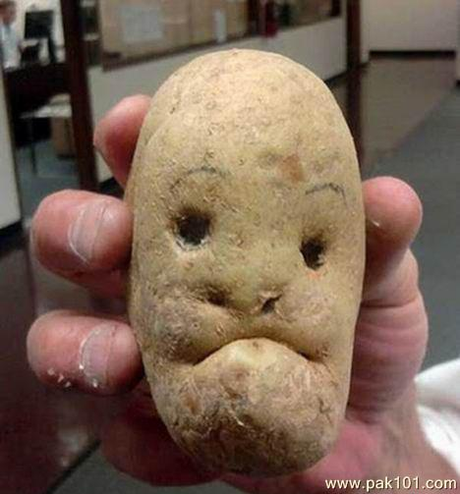 FFS!? Friday : Potatoes