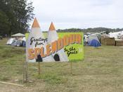 Festival Splendour Grass